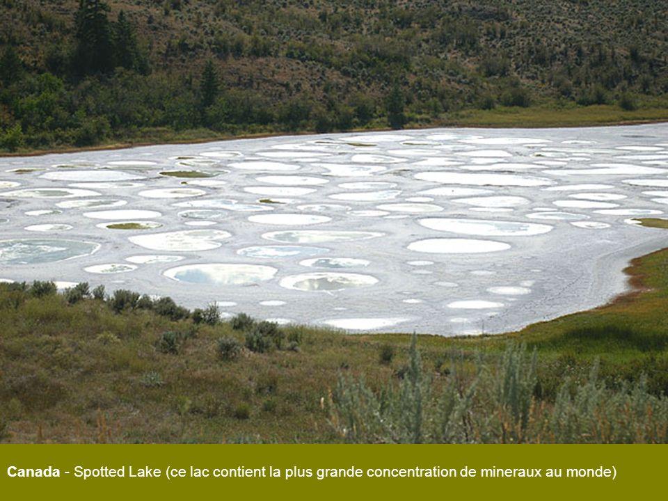 Canada - Spotted Lake (ce lac contient la plus grande concentration de mineraux au monde)