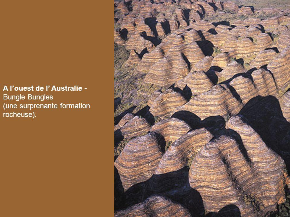 A l'ouest de l' Australie - Bungle Bungles