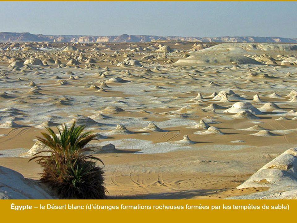 Égypte – le Désert blanc (d'étranges formations rocheuses formées par les tempêtes de sable)