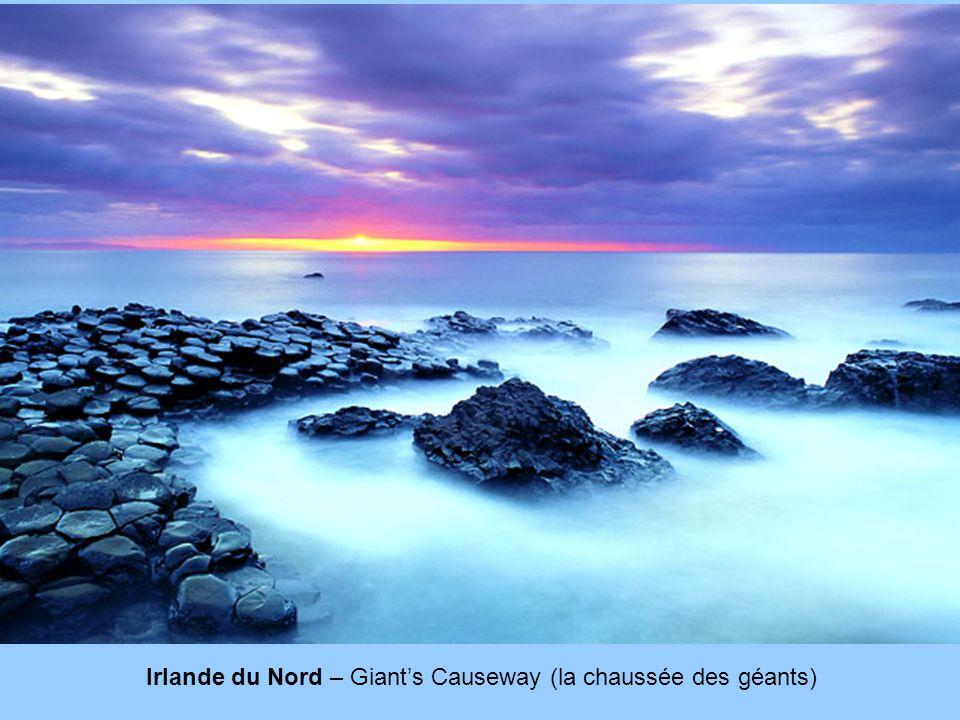 Irlande du Nord – Giant's Causeway (la chaussée des géants)