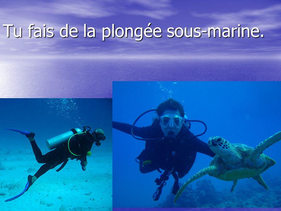 Tu fais de la plongée sous-marine.
