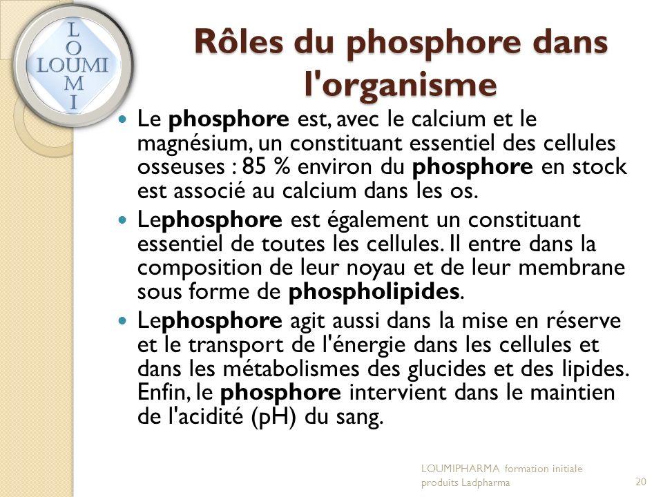 Rôles du phosphore dans l organisme