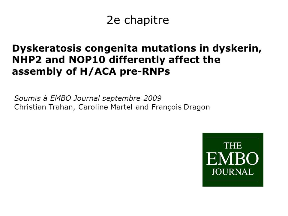 2e chapitre Dyskeratosis congenita mutations in dyskerin, NHP2 and NOP10 differently affect the assembly of H/ACA pre-RNPs.