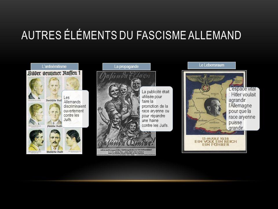 Autres éléments du fascisme allemand