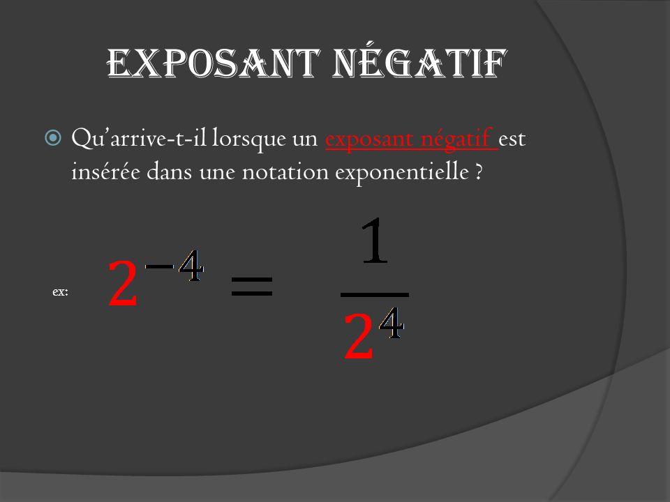 Exposant négatif Qu'arrive-t-il lorsque un exposant négatif est insérée dans une notation exponentielle