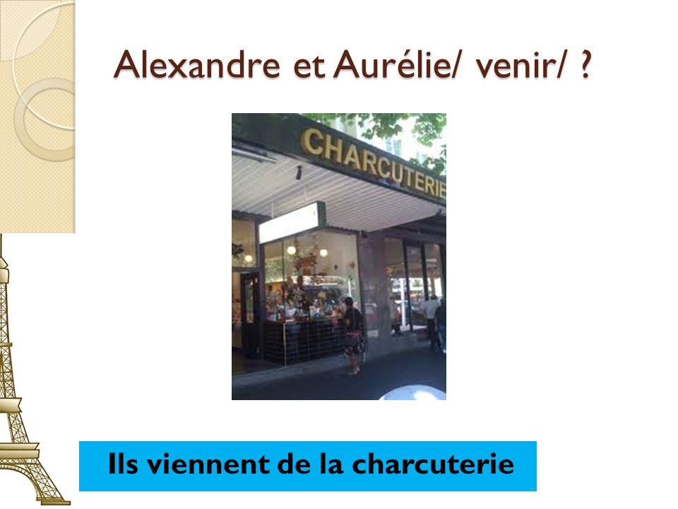 Alexandre et Aurélie/ venir/