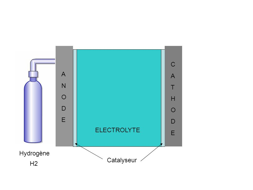 C A T H O D E A N O D E ELECTROLYTE Hydrogène Catalyseur H2