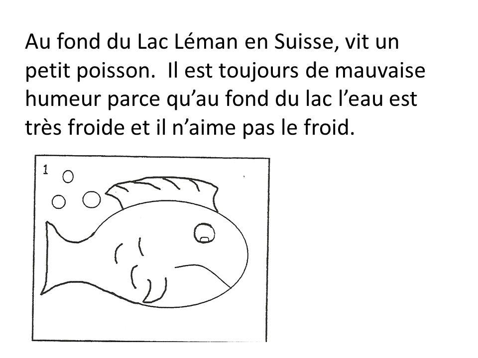 Au fond du Lac Léman en Suisse, vit un petit poisson