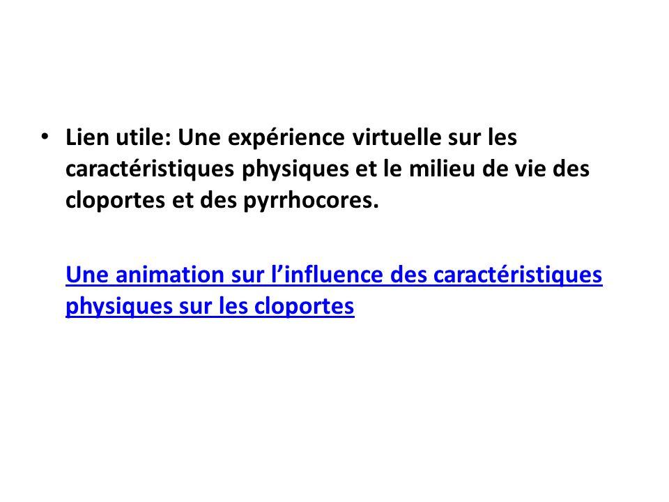 Lien utile: Une expérience virtuelle sur les caractéristiques physiques et le milieu de vie des cloportes et des pyrrhocores.