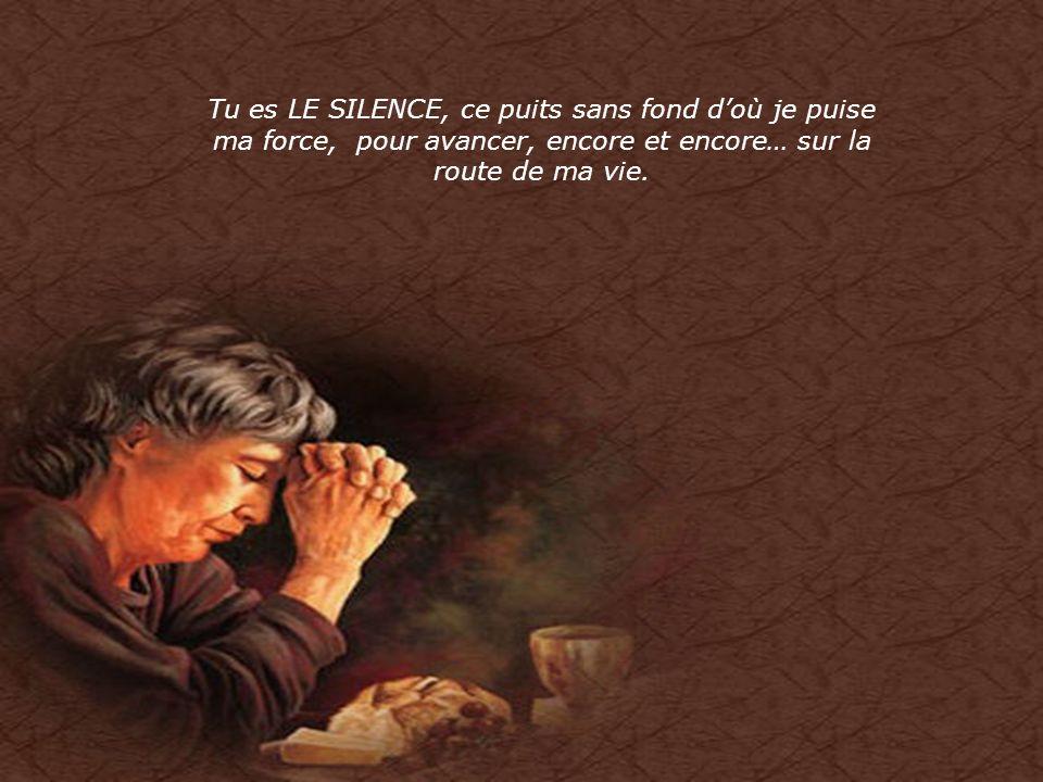 Tu es LE SILENCE, ce puits sans fond d'où je puise ma force, pour avancer, encore et encore… sur la route de ma vie.