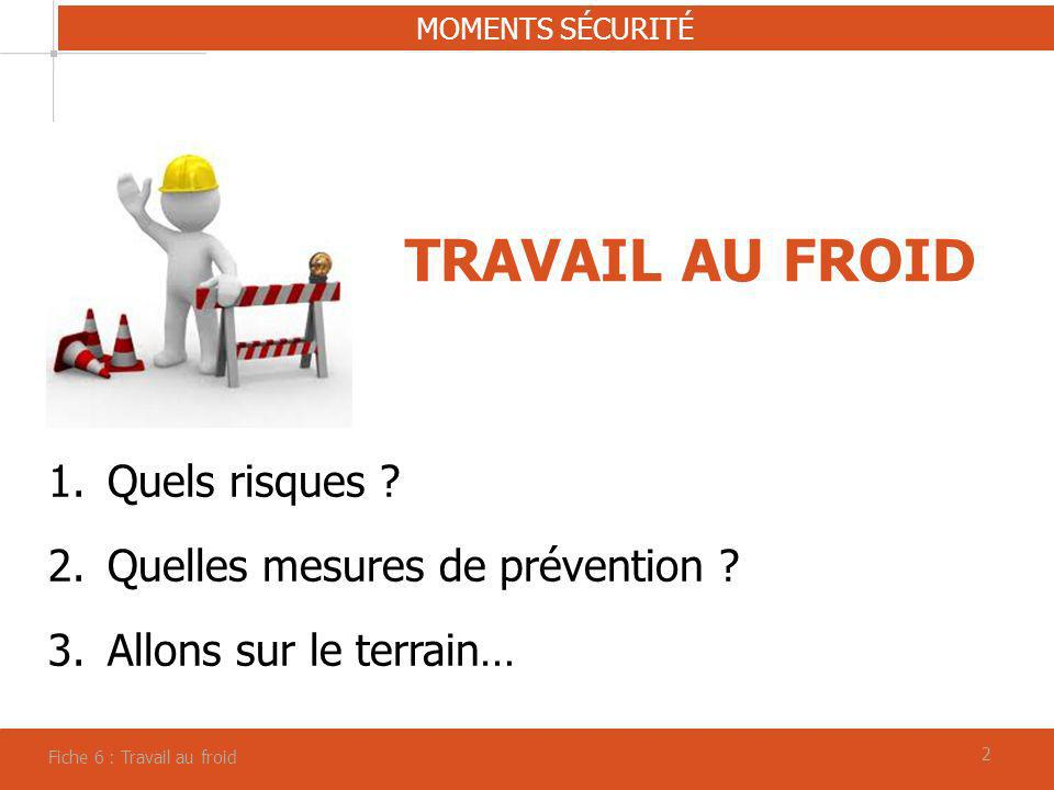 TRAVAIL AU FROID Quels risques Quelles mesures de prévention