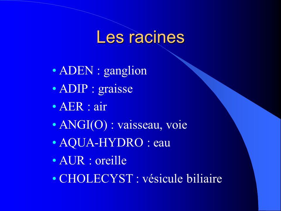 Les racines ADEN : ganglion ADIP : graisse AER : air