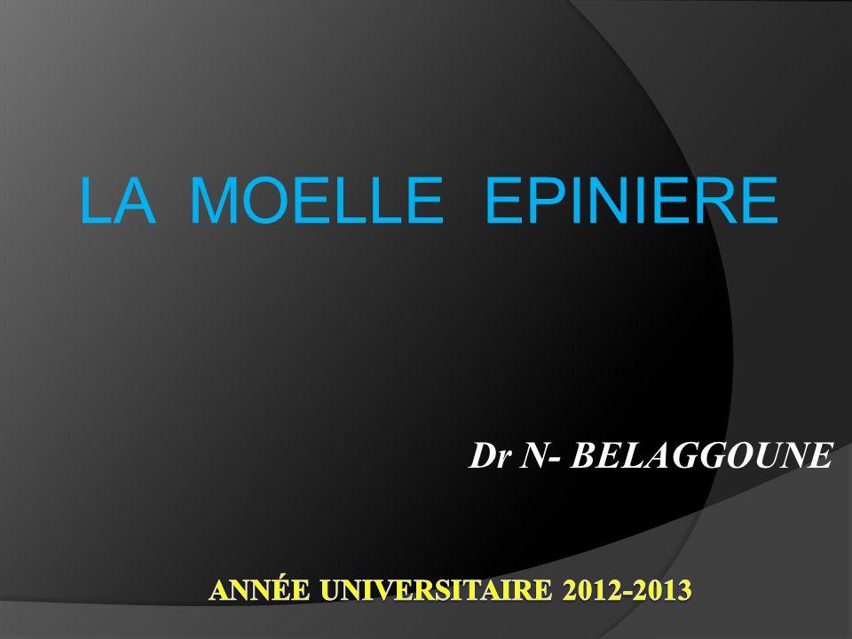LA MOELLE EPINIERE Dr N- BELAGGOUNE Année universitaire 2012-2013