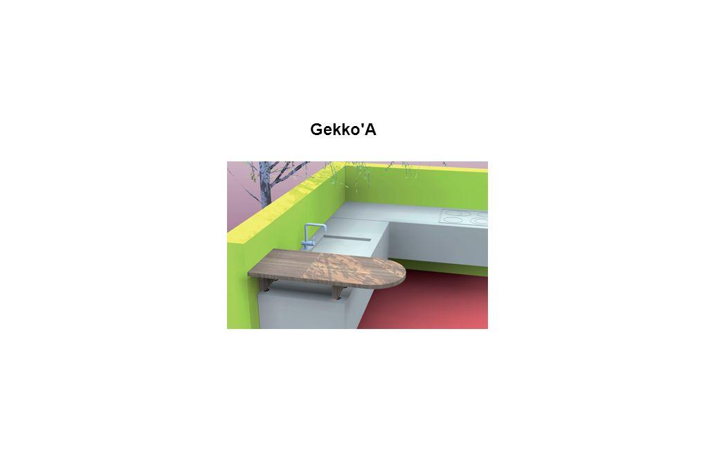 Gekko A