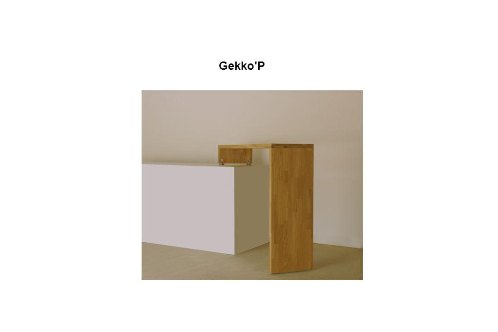 Gekko P