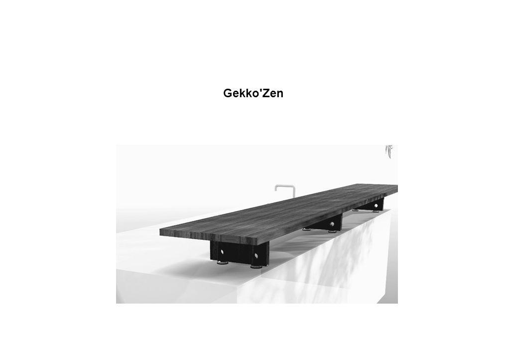Gekko Zen