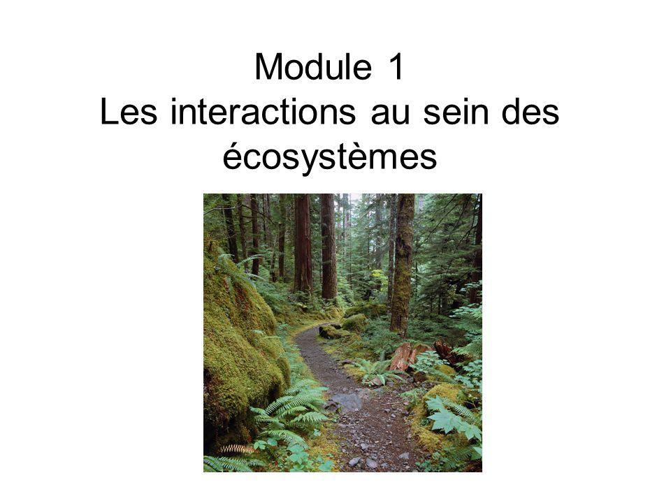 Module 1 Les interactions au sein des écosystèmes