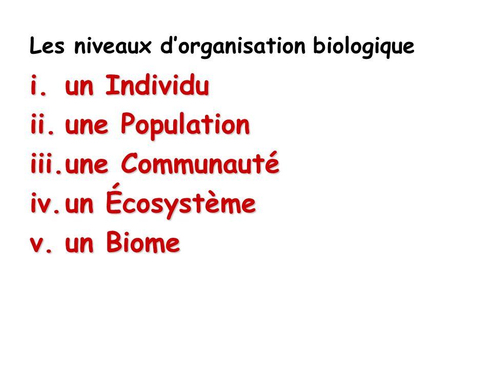 Les niveaux d'organisation biologique