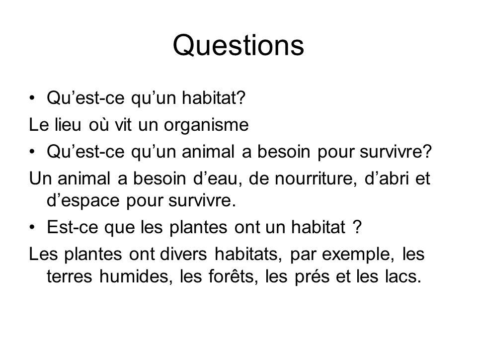 Questions Qu'est-ce qu'un habitat Le lieu où vit un organisme