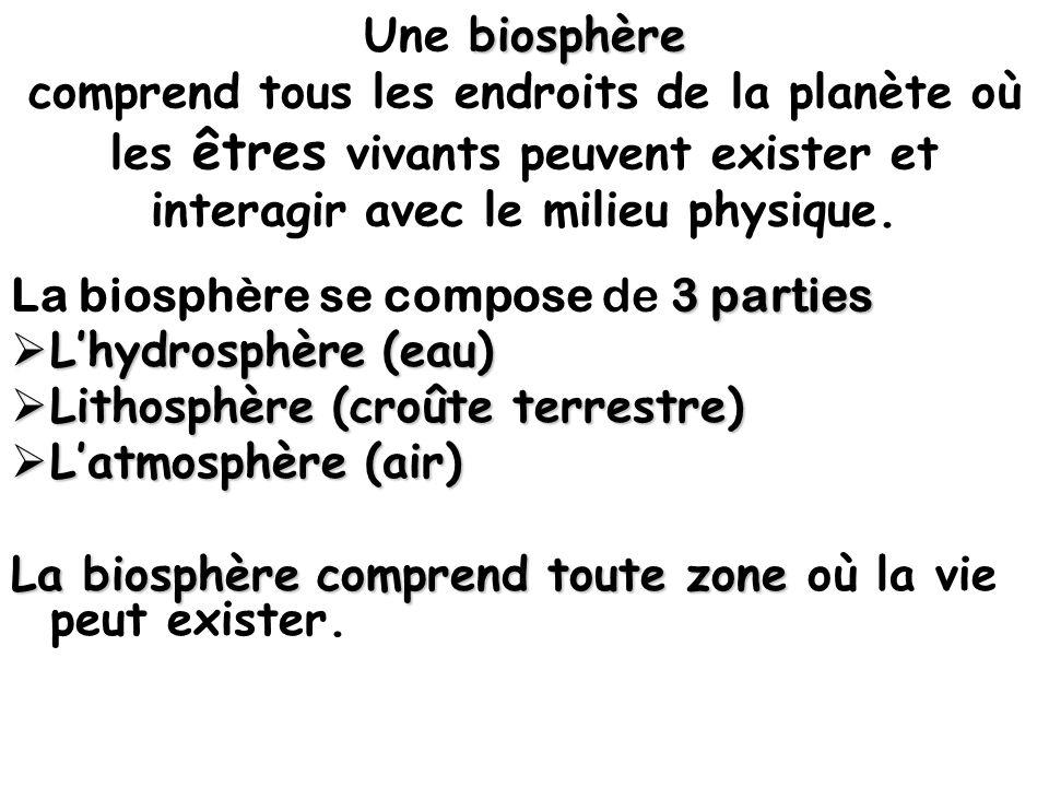 Une biosphère comprend tous les endroits de la planète où les êtres vivants peuvent exister et interagir avec le milieu physique.