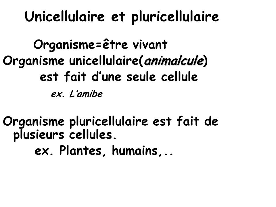 Unicellulaire et pluricellulaire