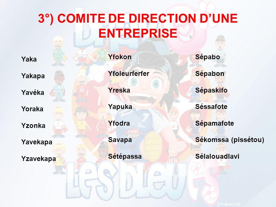 3°) COMITE DE DIRECTION D'UNE ENTREPRISE
