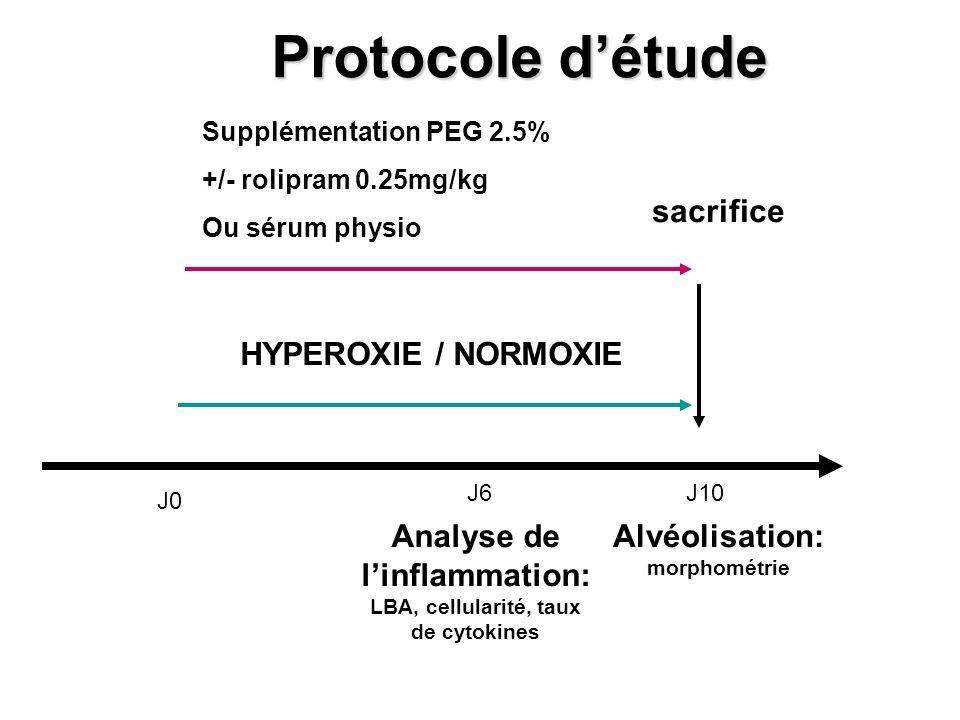 Protocole d'étude sacrifice HYPEROXIE / NORMOXIE
