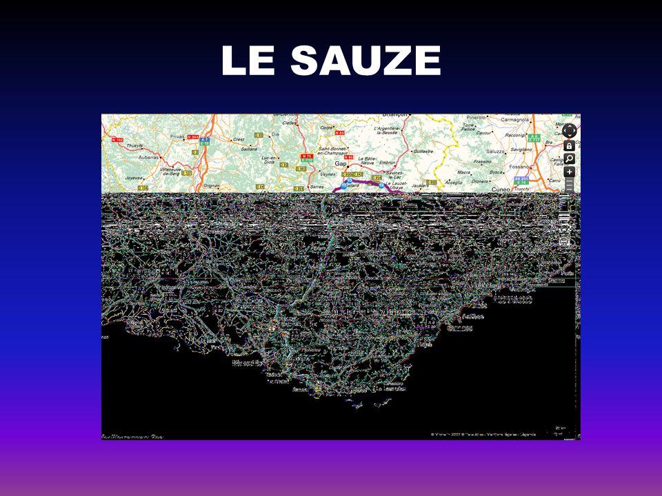 LE SAUZE