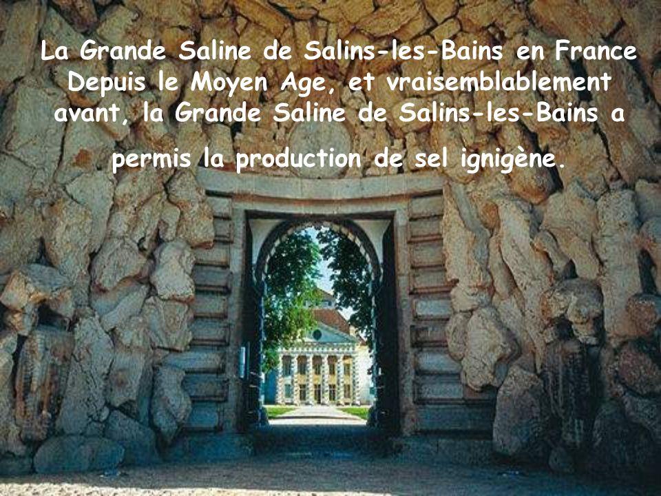 La Grande Saline de Salins-les-Bains en France Depuis le Moyen Age, et vraisemblablement avant, la Grande Saline de Salins-les-Bains a permis la production de sel ignigène.