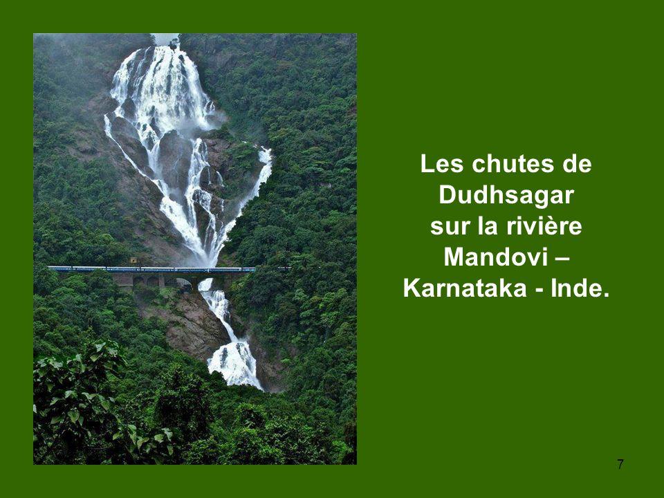 Les chutes de Dudhsagar sur la rivière Mandovi –Karnataka - Inde.