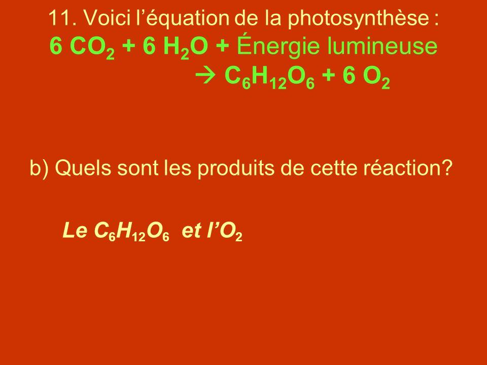 11. Voici l'équation de la photosynthèse : 6 CO2 + 6 H2O + Énergie lumineuse  C6H12O6 + 6 O2
