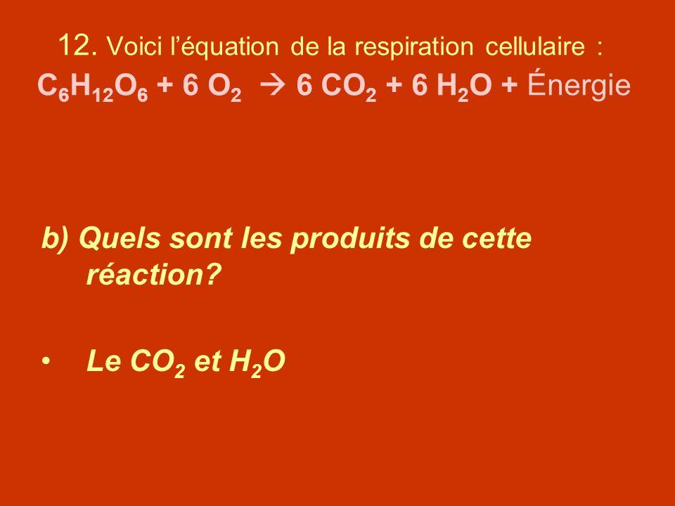 12. Voici l'équation de la respiration cellulaire : C6H12O6 + 6 O2  6 CO2 + 6 H2O + Énergie