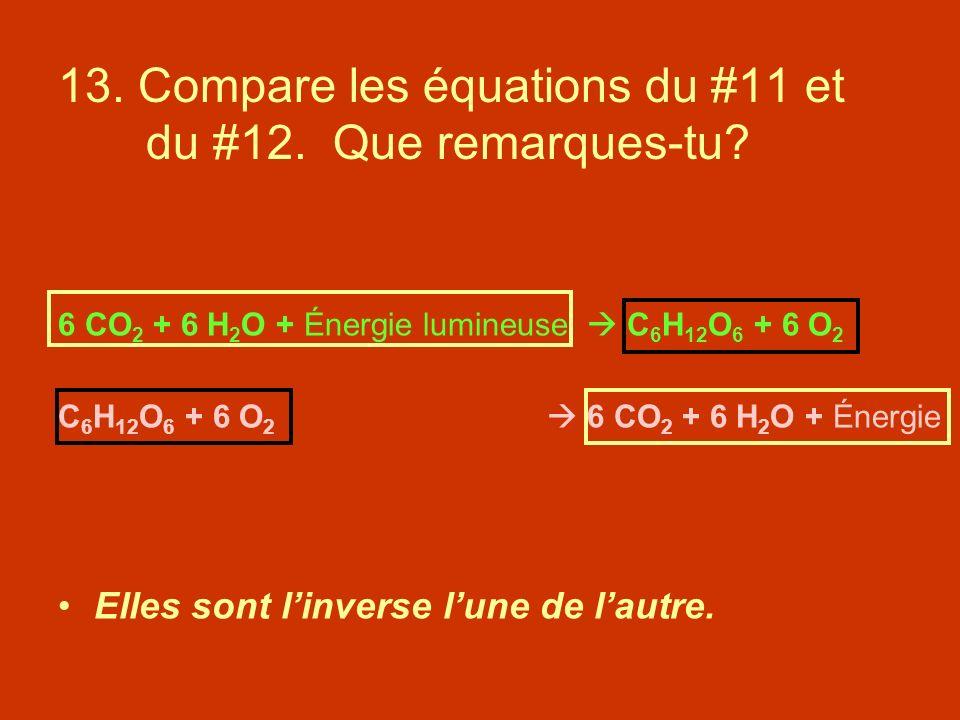 13. Compare les équations du #11 et du #12. Que remarques-tu