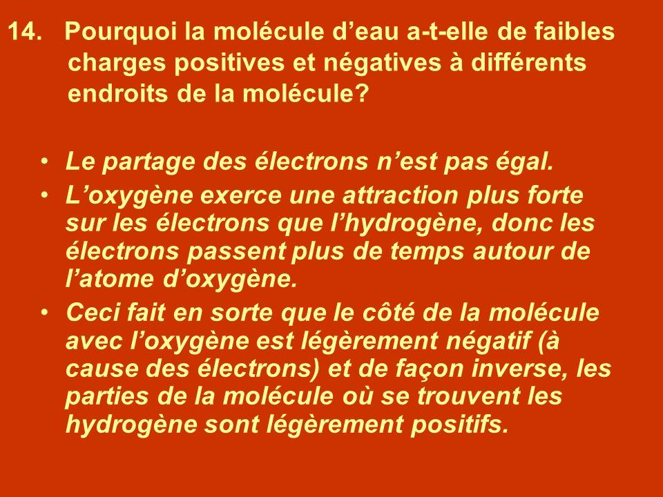 14. Pourquoi la molécule d'eau a-t-elle de faibles charges positives et négatives à différents endroits de la molécule