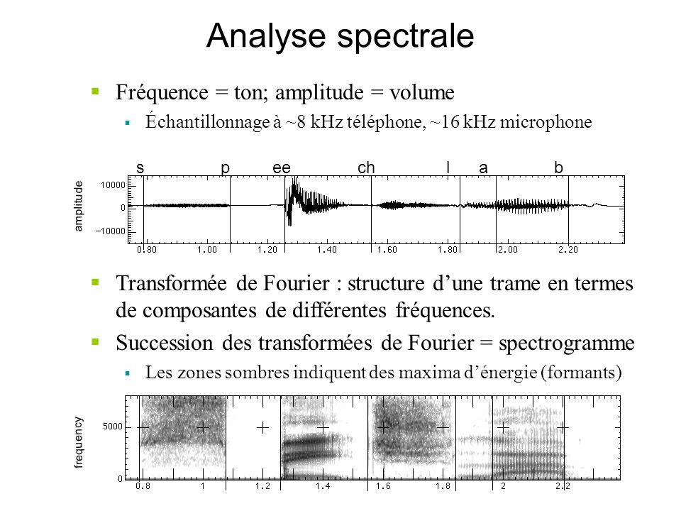Analyse spectrale Fréquence = ton; amplitude = volume