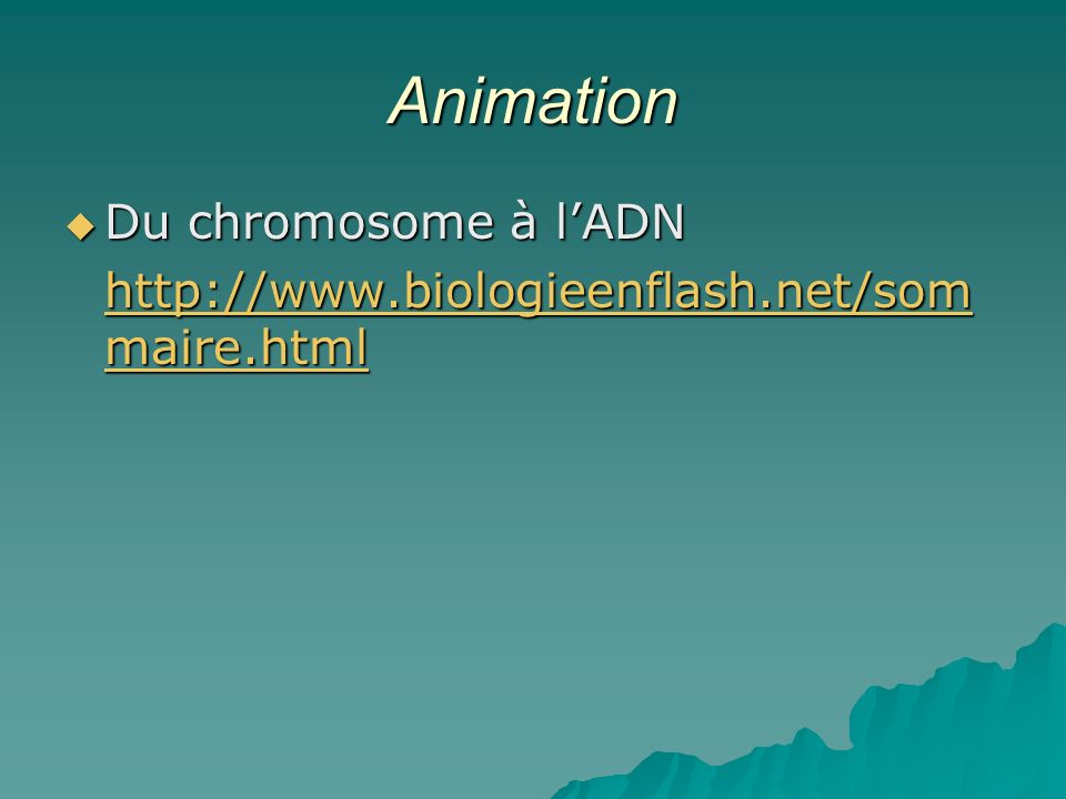 Animation Du chromosome à l'ADN