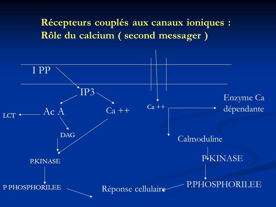 Récepteurs couplés aux canaux ioniques : Rôle du calcium ( second messager )