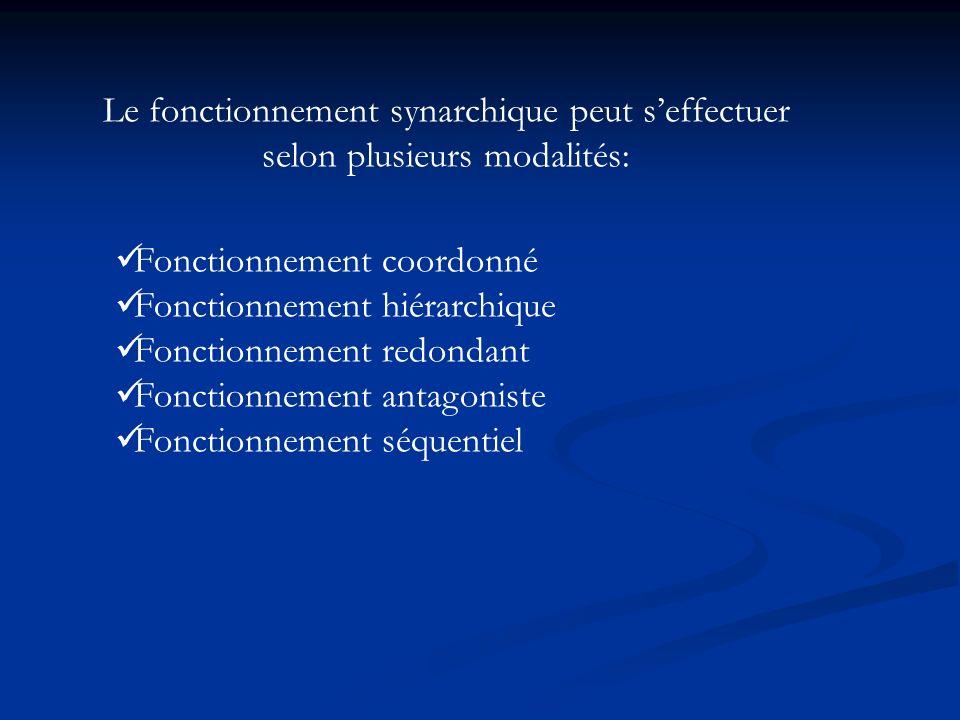 Le fonctionnement synarchique peut s'effectuer selon plusieurs modalités: