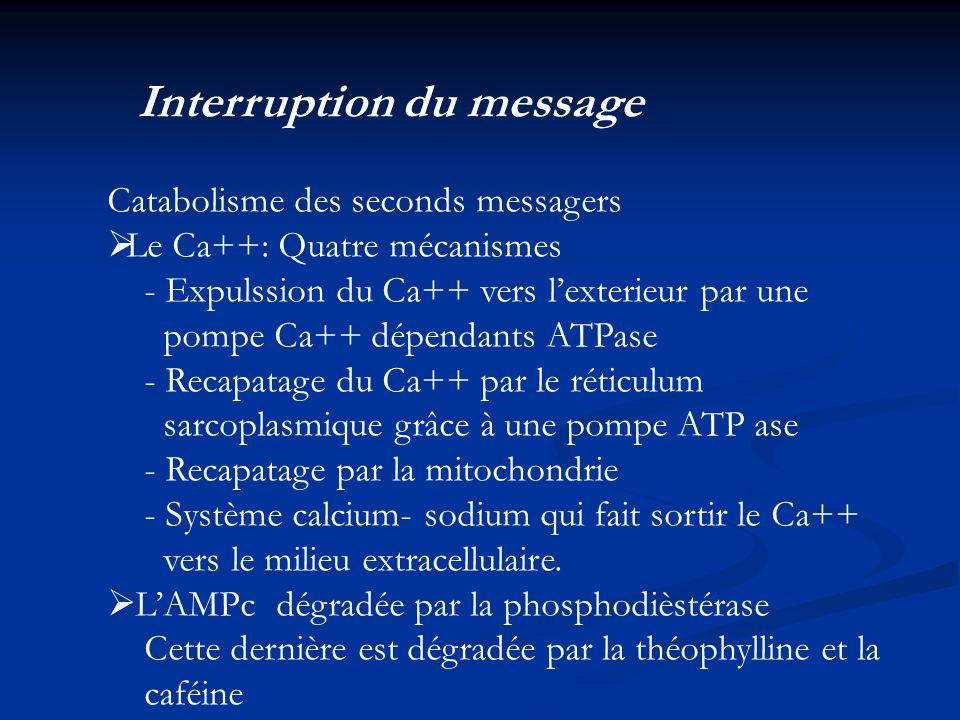 Interruption du message