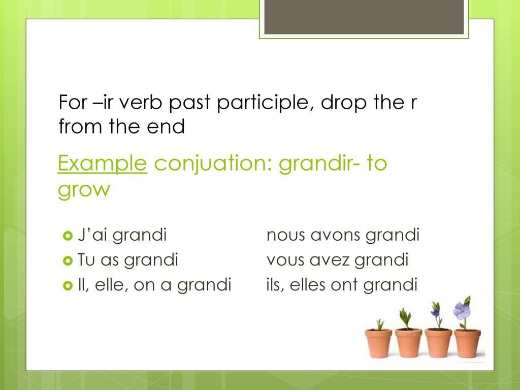 Example conjuation: grandir- to grow