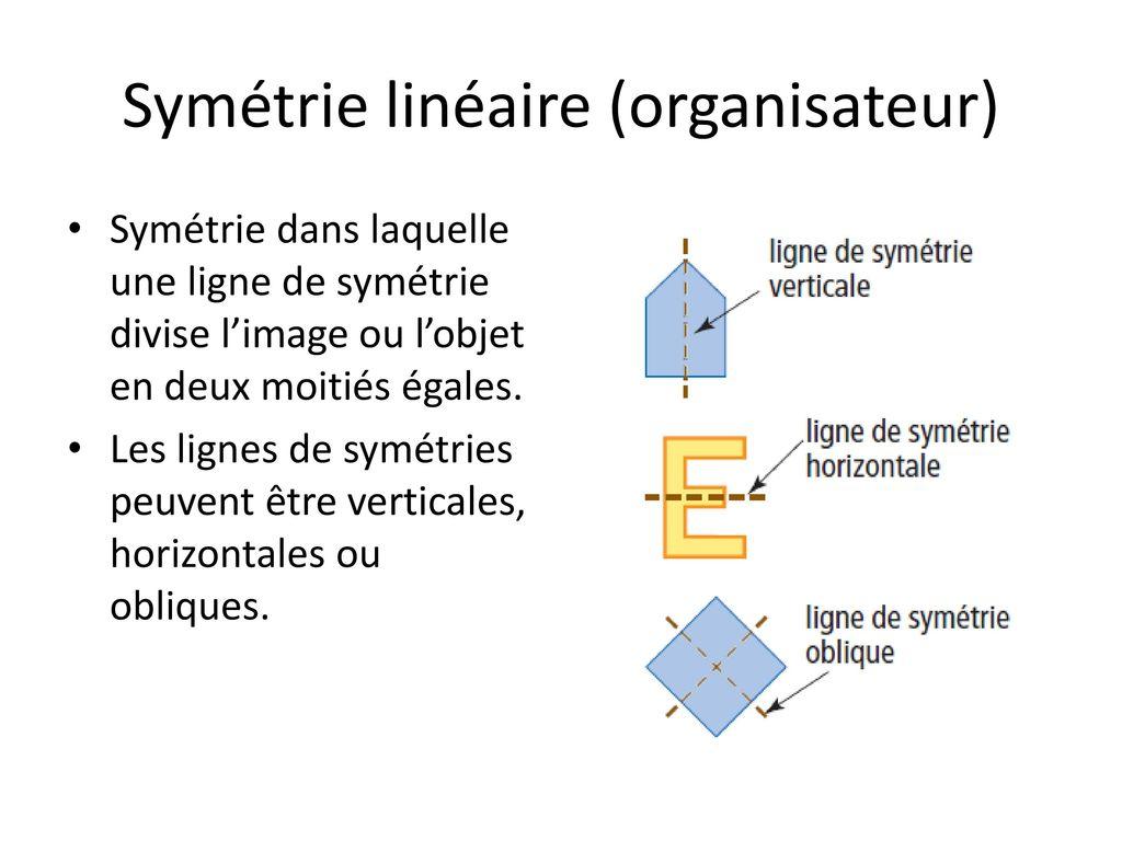 La Sym Trie Et L Aire De La Surface Ppt T L Charger