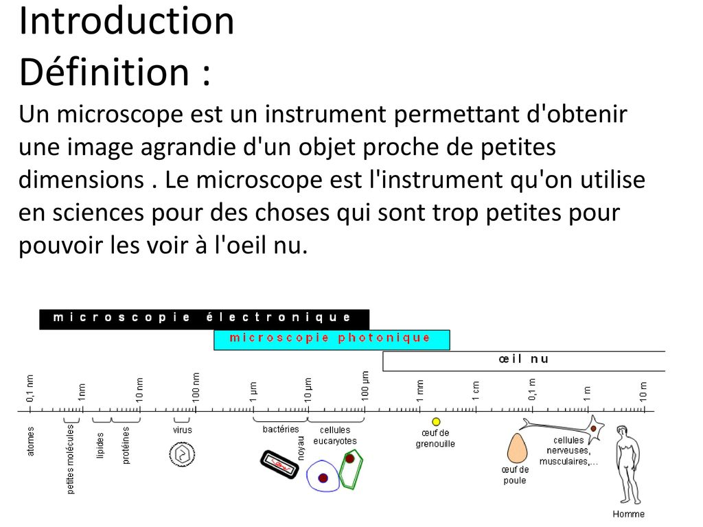 Comment fonctionne un microscope optique ppt video for Comment puis je obtenir des plans pour une maison