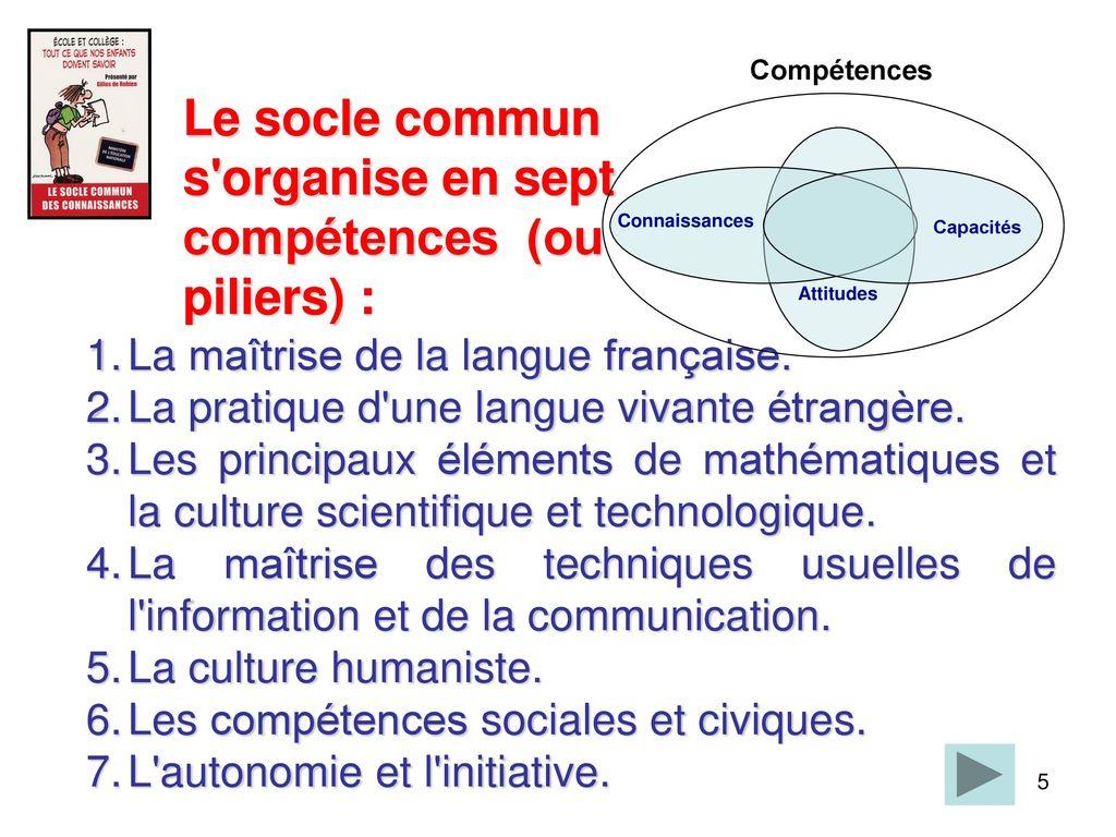 mise en  u0153uvre du socle commun de connaissances et de comp u00e9tences