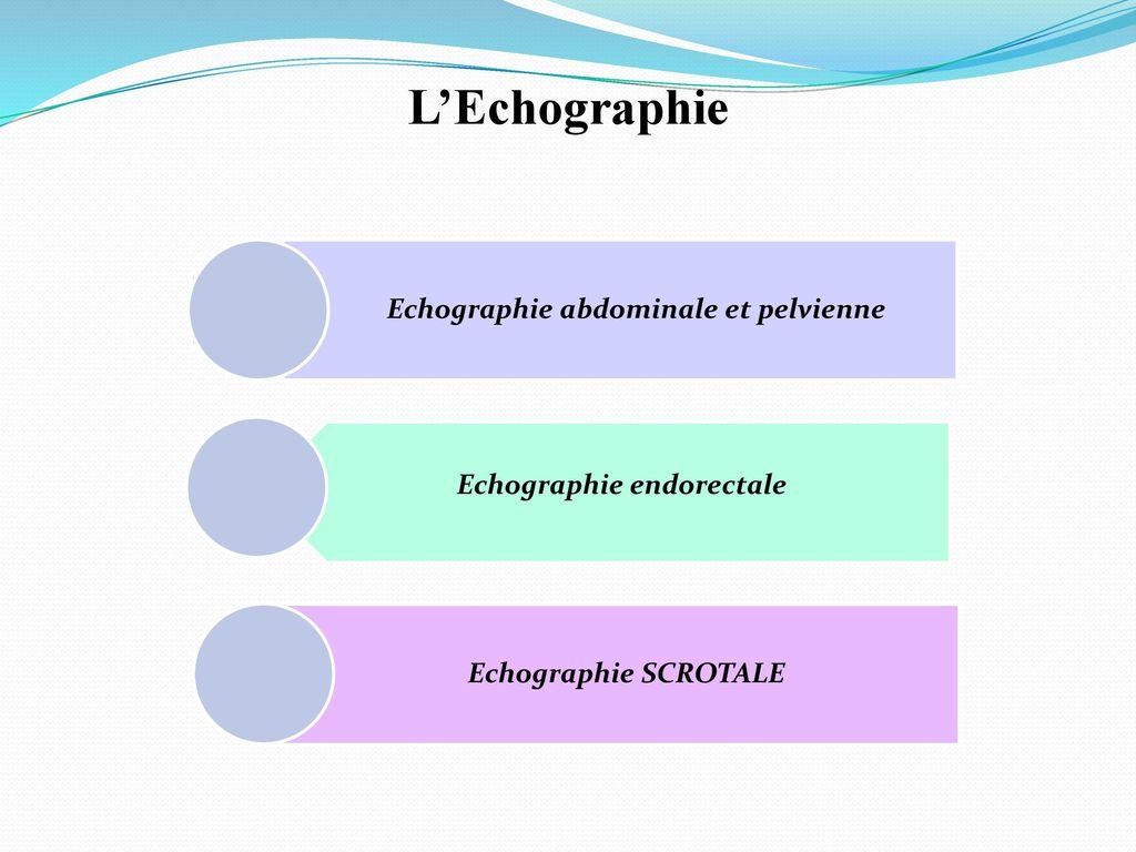 échographie abdominale et pelvienne