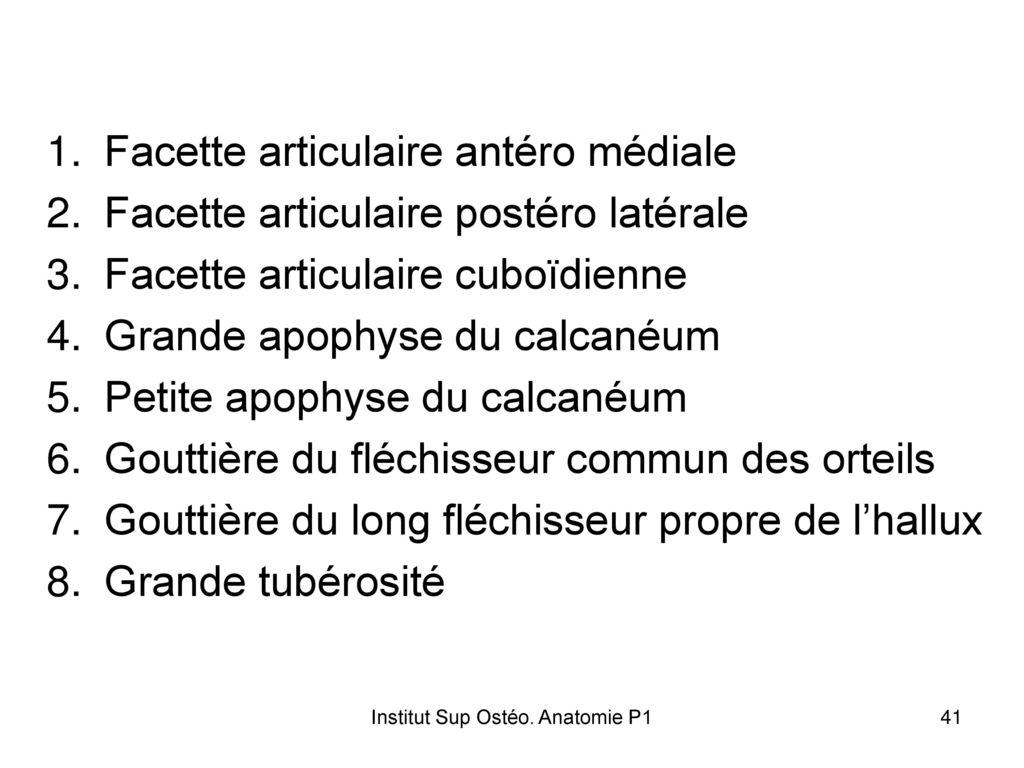 Fantastisch Gelenkanatomie Definition Bilder - Anatomie Von ...