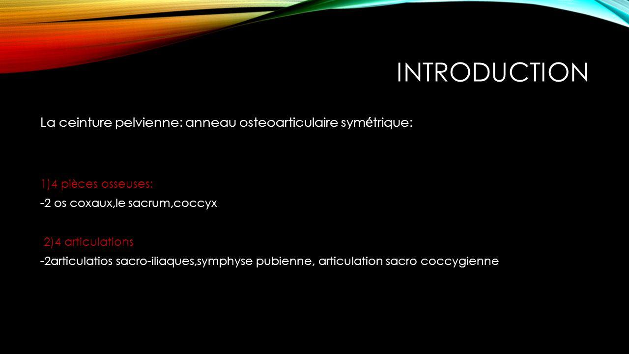 Introduction La ceinture pelvienne: anneau osteoarticulaire symétrique: 1)4 pièces osseuses: -2 os coxaux,le sacrum,coccyx.