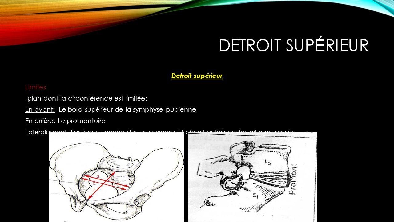 Detroit supérieur