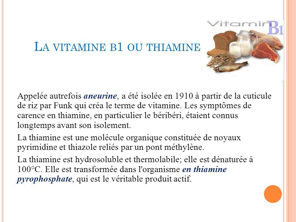 La vitamine b1 ou thiamine