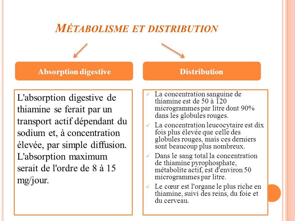 Métabolisme et distribution