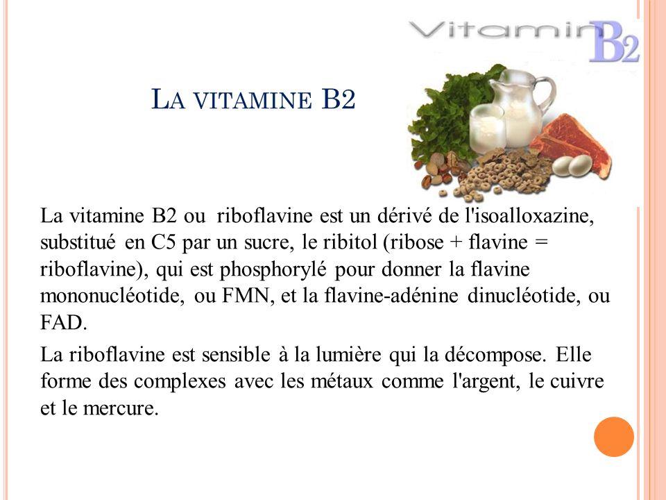 La vitamine B2